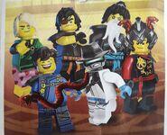 Ninja in costumes