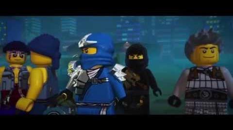 21st Century Ninja