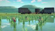 Wetland farmers