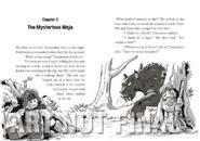 The mysterious ninja 1