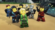 Meet the Ninja group