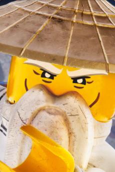 Ву (The LEGO Ninjago Movie)