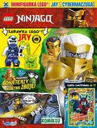 LEGO Ninjago 12-20