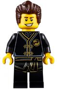 Movie Dareth Minifigure