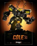 TLNM Cole Poster2