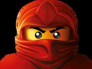 Branding-ninja