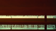 Screenshot (429)