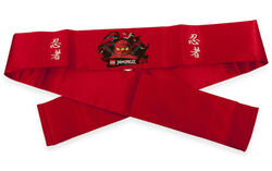 853108 Ninjago Headband.jpg