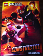 Constrictai poster