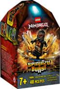 70685 Spinjitzu Burst Cole Box