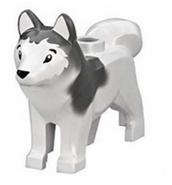 Wu's dog legacy
