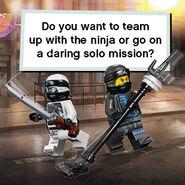 Choose Your Ninja Mission-2