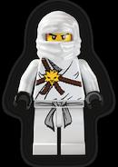 Training Zane Minifigure
