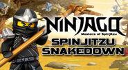 Nin snakedown 300x165