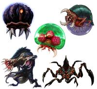 Metroid Species.png