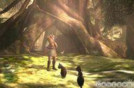 Zeldatpbetawoods2
