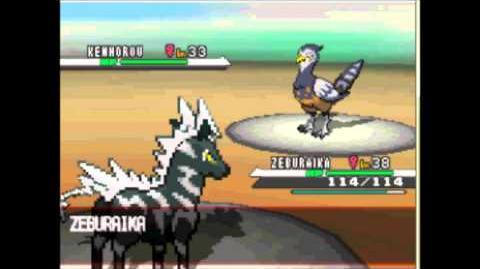 Pokemon Black & White vs