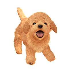 Dog (Nintendogs)