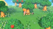 Animal Crossing New Horizons - Screenshot 05