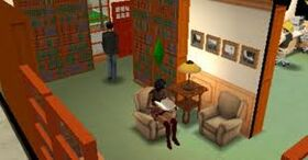 3DS Sims 3 (Library)