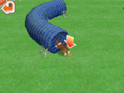 Agility tunnel.png