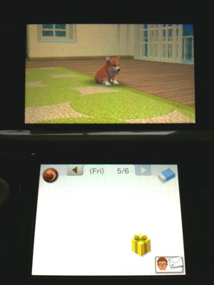 A picture of a golden present in the player's journal, given via a SpotPass President.