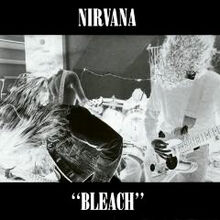 Bleach-cover art.jpg