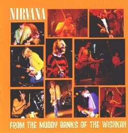 Nirvana-From-The-Muddy-Ba-228396.jpg