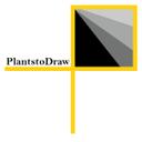 User:PlantstoDraw