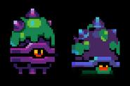 Shield Snails