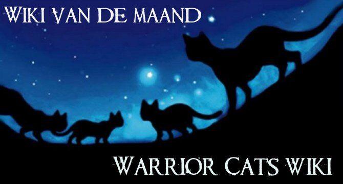 Featured-201408-Warriorcats.jpg
