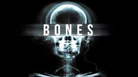 Aviators - Bones