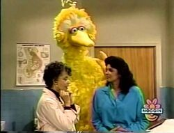 1999-03-13 0200am Sesame Street Unpaved.jpg