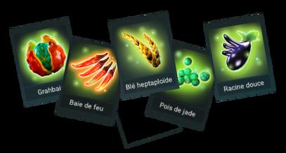 Ingredients-0.png