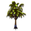 SPECIAL.TREE01.png