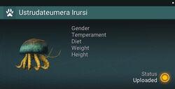 Ustrudateumera Irursi - NA.jpg