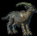 """""""Image of B. Gutanritosa, an animal found on New Giome"""""""