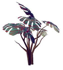 Burrecia mumundoreus.jpg