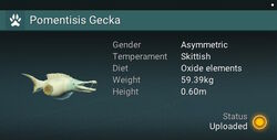 Pomentisis Gecka - Asymmetric.jpg