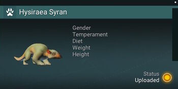 Hysiraea Syran