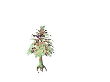 Plant uoquaginus goidestera.png