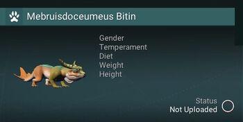 Mebruisdoceumeus Bitin