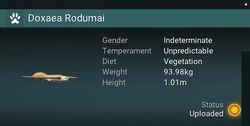 Doxaea Rodumai - Indeterminate.jpg