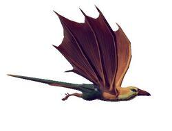 Bicolored Sparrowbat.jpg