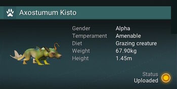 Axostumum Kisto