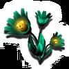 Gamma Root