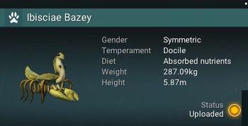 Ibisciae Bazey