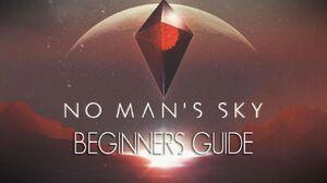 NsmMisc BeginnersGuide.JPG