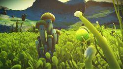 Mushroomfamily.jpg