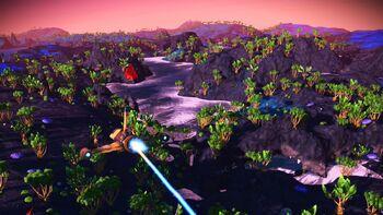 Hollys Blue Moon Paradise